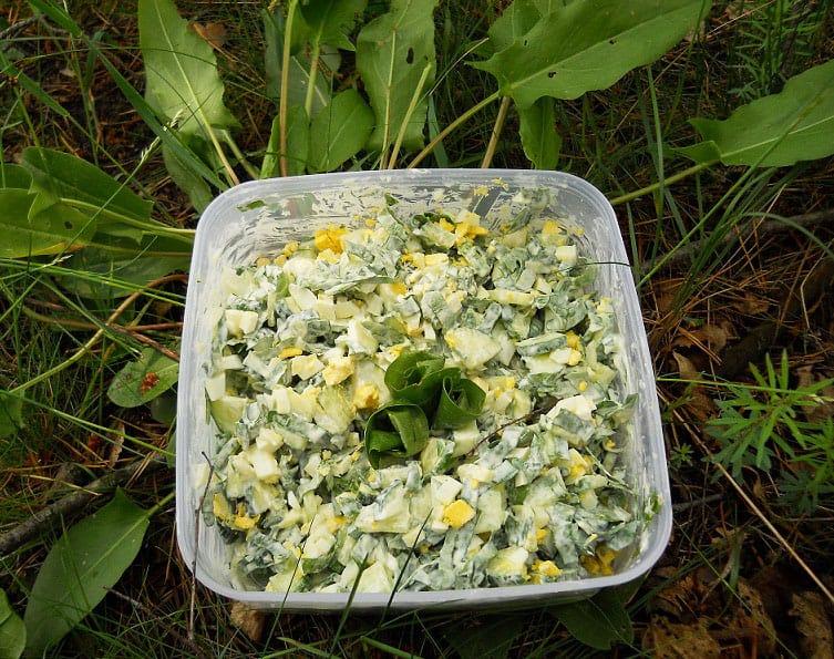 Rūgštynių, agurkų salotos - bulviukose.lt